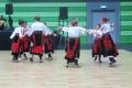 vlaski_2011_03