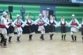 vlaski_2011_26