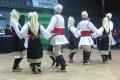 vlaski_2011_27