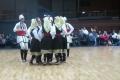 vlaski_2011_29