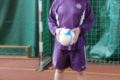 Obnovljen rad sportskog saveza u Beču